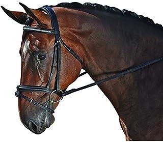 M. Toulouse Platinum Gemstone Dressage Bridle