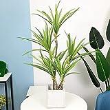 88 / 55cm Grandes Plantas Artificiales Árbol Tropical Dracaena Hoja de Marihuana Aire Acondicionado Verde para la decoración del jardín de su casa
