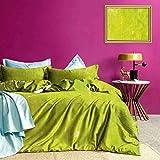 Adorise Cubierta del edredón de Grunge fijadas nebuloso del Color Fija para Todo Uso de Cama Disfrute de un sueño reparador 's - Tamaño Twin