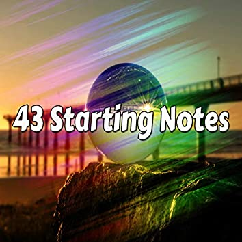 43 Starting Notes