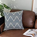 OJIA Woven Throw Pillow Cover Farmhouse Cushion Case Tribal Navy Blue Pillow Case Cotton Neutral Collection for Home Living Room Party Car Office Outdoor Decoration (18x18 inch, Navy Blue)