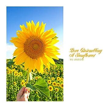 Love Resembling A Sunflower
