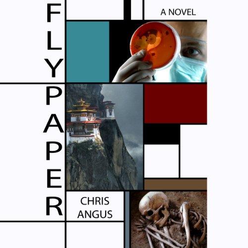 Flypaper audiobook cover art