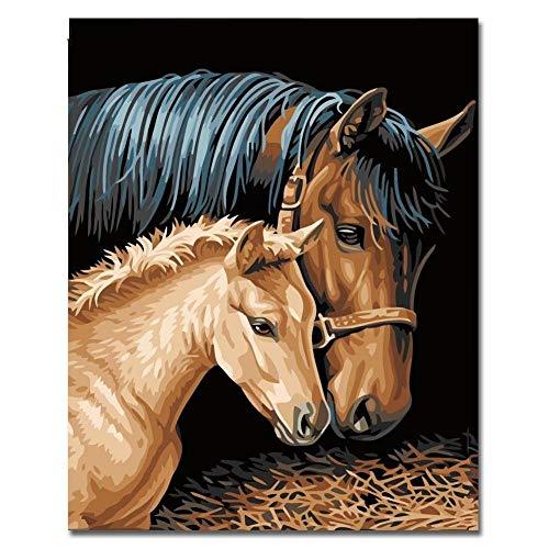 wqavten Paard Koppels Schilderen Door Getallen Kits Diy Kleurplaten Schilderen Door Getallen