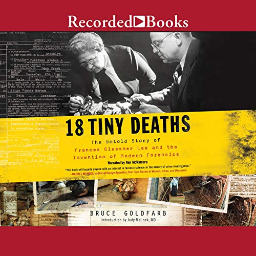 18 Tiny Deaths audiobook cover art
