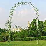Arco de jardín para Boda, Arco de jardín, Enrejado, Marco de Metal, árbol de Rosas, Planta trepadora, Arco para jardín, césped, Patio, Patio, Negro