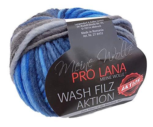 Pro Lana Wash Filz Filzwolle Color 81, Filzwolle mit Farbverlauf zum Stricken und Filzen in der Waschmaschine