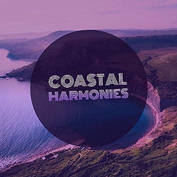 """"""" Meditative Coastal Harmonies """""""