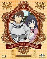 「ネトゲの嫁は女の子じゃないと思った?」廉価版BD-BOX 5月発売