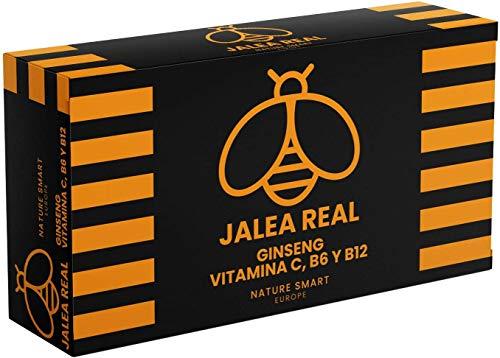 Jalea Real Con Ginseng | Vitamina C | Vitaminas B6 y B12 | Aporta Energía y Vitalidad |Refuerza las defensas (20 AMPOLLAS)