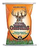 Top 10 Deer Food Plot Seeds