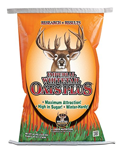 Whitetail Institute Oats Plus Deer Food Plot Seed, High-Sugar Oat Variety Establishes and Grows Quickly and is Highly Attractive to Deer, Cold Tolerant and Winter Hardy, 45 lbs (.5 Acre)