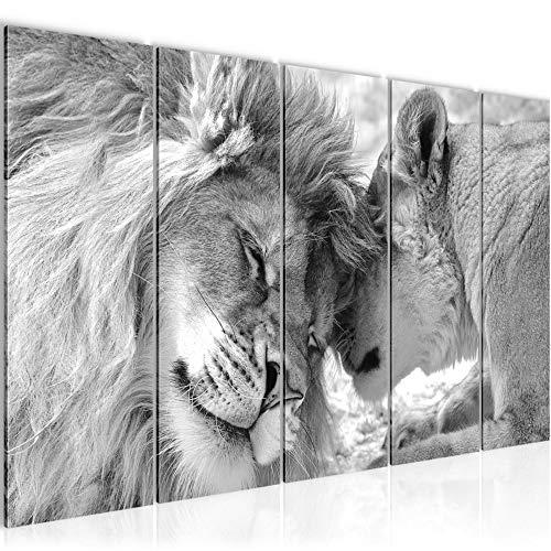 Bild Löwen Liebe Kunstdruck Vlies Leinwandbild Wanddekoration Wohnzimmer Schlafzimmer 002156c