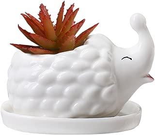 Best ceramic hedgehog planter Reviews