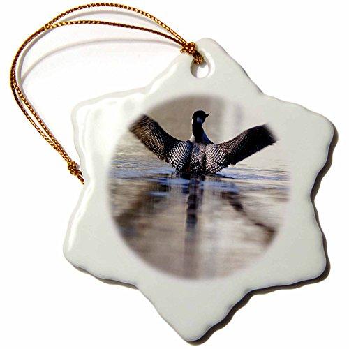 3dRose orn_91396_1 Minnesota, Common Loon bird, Leech Lake - US24 PHA0005 - Peter Hawkins - Snowflake Ornament, Porcelain, 3-Inch