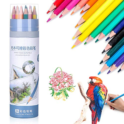24 lapices De Colores Profesionales,Adultos policromos lapiceros,metalica policromos lapiceros,mandalas pintura lápices,Set Ideal para la pintura creativa bosquejo