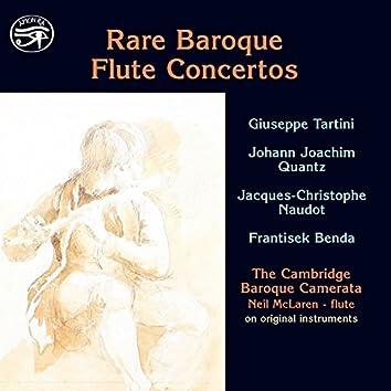 Rare Baroque Flute Concertos on Original Instruments