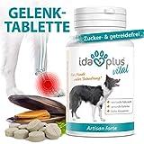 Ida Plus - Artisan forte - 120 Tabletten für Hunde - Gelenktabletten für Hunde - für gesunde Gelenke & mehr Bewegungsfreude - unterstützt die Gelenkfunktion - Omega-3, Grünlippmuschel & Glucosamin