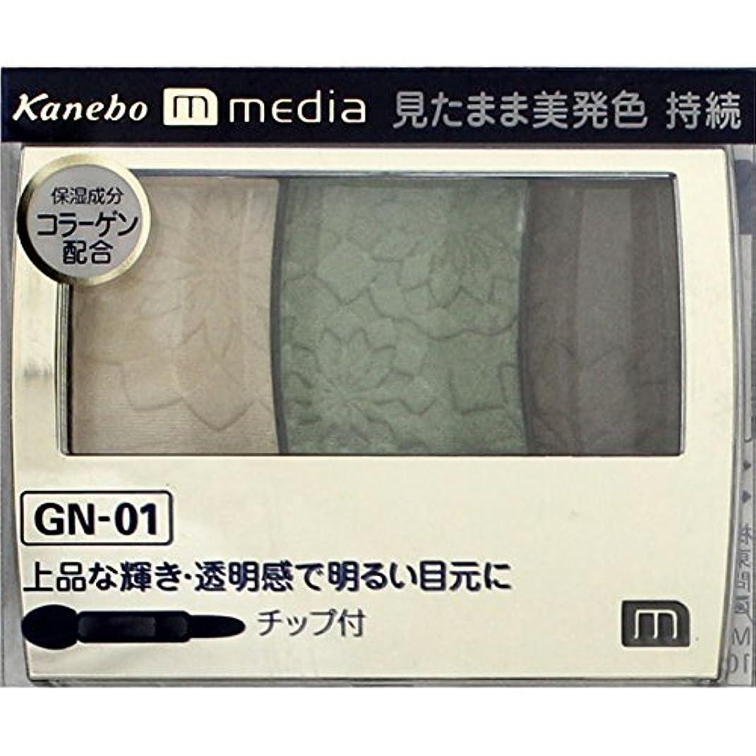 偶然固執額【カネボウ】 メディア グラデカラーアイシャドウ GN-01
