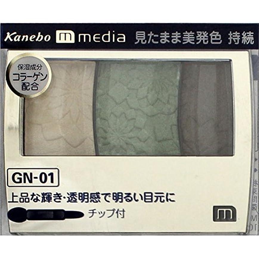 未払い入札クック【カネボウ】 メディア グラデカラーアイシャドウ GN-01