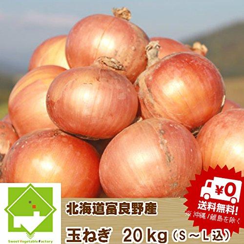 北海道富良野産 玉葱 20kg