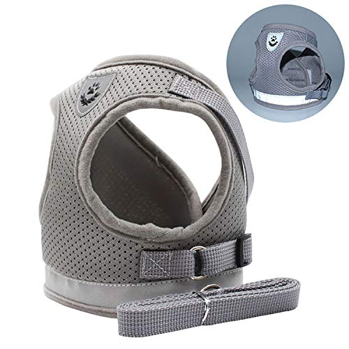 Goocky Dog Cat Harness Vest, Pet Soft Safety Mesh Breathable Leash Set with 2 Metal Buckle for Kitties, Puppy (Large)