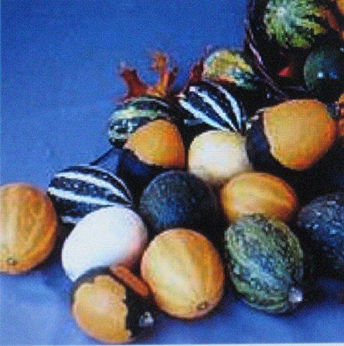 Gourdes Seeds * Grand & Small Mix * Fun pour les enfants * Arts & Crafts * Décorations *