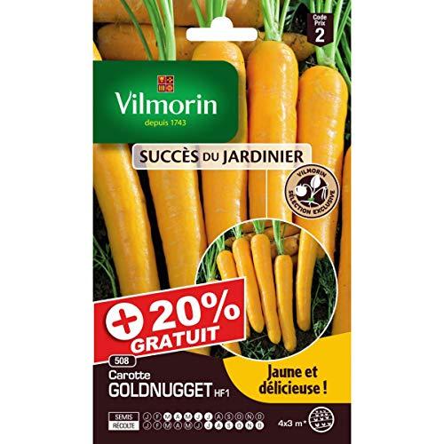 Vilmorin - Sachets graines carottes Goldnugget HF1 +20% gratuit