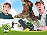 Dinosaur Raptor Cam!