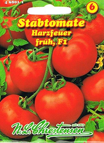 Stabtomate Harzfeuer F1 Hybridsorte, mittelgroße,sehr frühe, runde , sehr aromatische Früchte