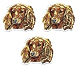 Umama Patch Set of 3 Golden English Cocker Spaniel Dog Breed Pet Animal Cartoon Patch Puppy Cute Motif Sew Iron on Patch for Kids Clothing School Bag Jackets Jeans Backpacks Hats