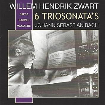 6 Bach Trio Sonatas