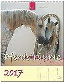 PFERDETRÄUME - Original Stürtz-Kalender 2017 - Hochformat-Kalender 36 x 45 cm mit Platz für Notizen (Kalender-Hochformat)