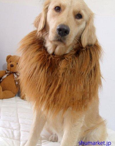 SH-コスチューム ライオン 着ぐるみ ペット用 犬 大変身