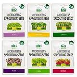 Microgreens Seeds Kit Organic NonGMO Heirloom - Seeds | 6-Pack (150g) Alfalfa, Arugula, Beetroot, Cress, Radish, Sunflower | Indoor Planting and Sprouting