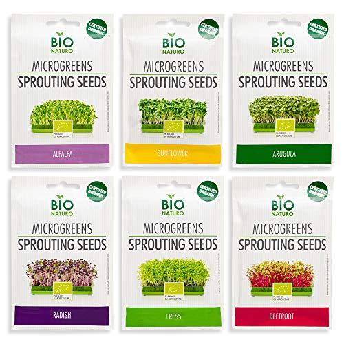 Microgreens Seeds Kit | Organic Non-GMO | 6-Pack (150g) Alfalfa, Arugula, Beetroot, Cress, Radish, Sunflower | Indoor Planting and Sprouting
