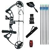 Southland Archery Supply SAS Primal 35-50 lbs Target Compound Bow 40 1/2 ATA with Red Riser and Carbon Limbs (Black)