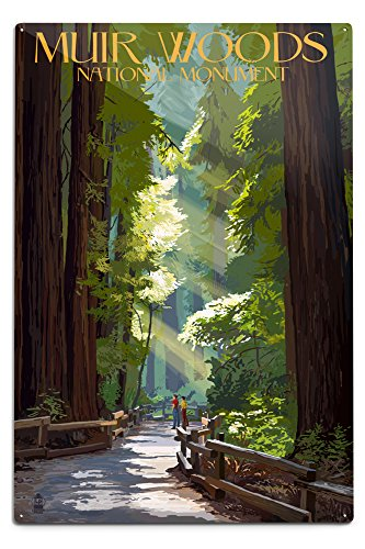 Lantern Press Muir Woods National Monument, California, Pathway 36762 (6x9 Aluminum Wall Sign, Wall Decor Ready to Hang)