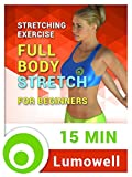 Stretching Exercise: Full Body Stretch for Beginners