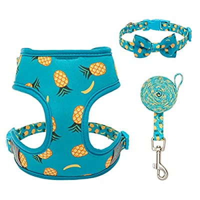 PUPTECK Dog Collar Harness and Leash Set - Pineapple Comfort Padded Vest Harnesses, Adjustable Cute Bow Collar for Puppies, Cats, Small Pets