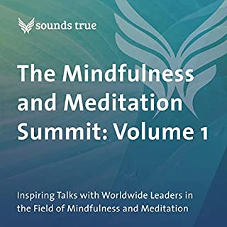 The Mindfulness and Meditation Summit: Volume 1 audiobook cover art