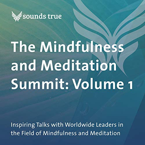 Couverture de The Mindfulness and Meditation Summit: Volume 1
