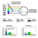 Zoom IMG-2 occhiali anti luce blu lifeart
