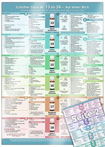 Schüßler-Salze Nr. 13 bis 24 – Auf einen Blick (2020): Schnell orientieren, leicht verstehen und selbst anwenden (DINA4 - laminiert)