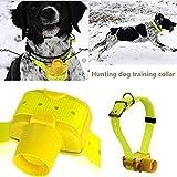 Petdiary Beeper Collare Cane da Caccia Addestramento Dog Collar Beep