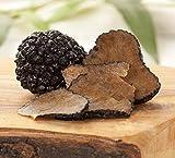 Seeds Truffle Black Mushroom Dried Mycelium Spawn Substrate for Planting