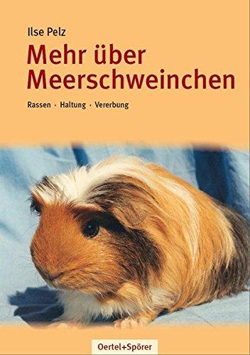 Mehr über Meerschweinchen: Rassen - Haltung - Vererbung
