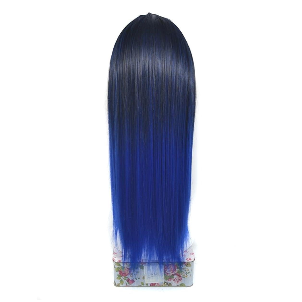 運営遮る大陸JIANFU ノンマーキング 化学繊維 ヘア エクステンション U字型 ハーフ ヘッドヘア ピース リアル 長い ストレート ウィッグ カバー (Color : Black gradient sapphire blue)