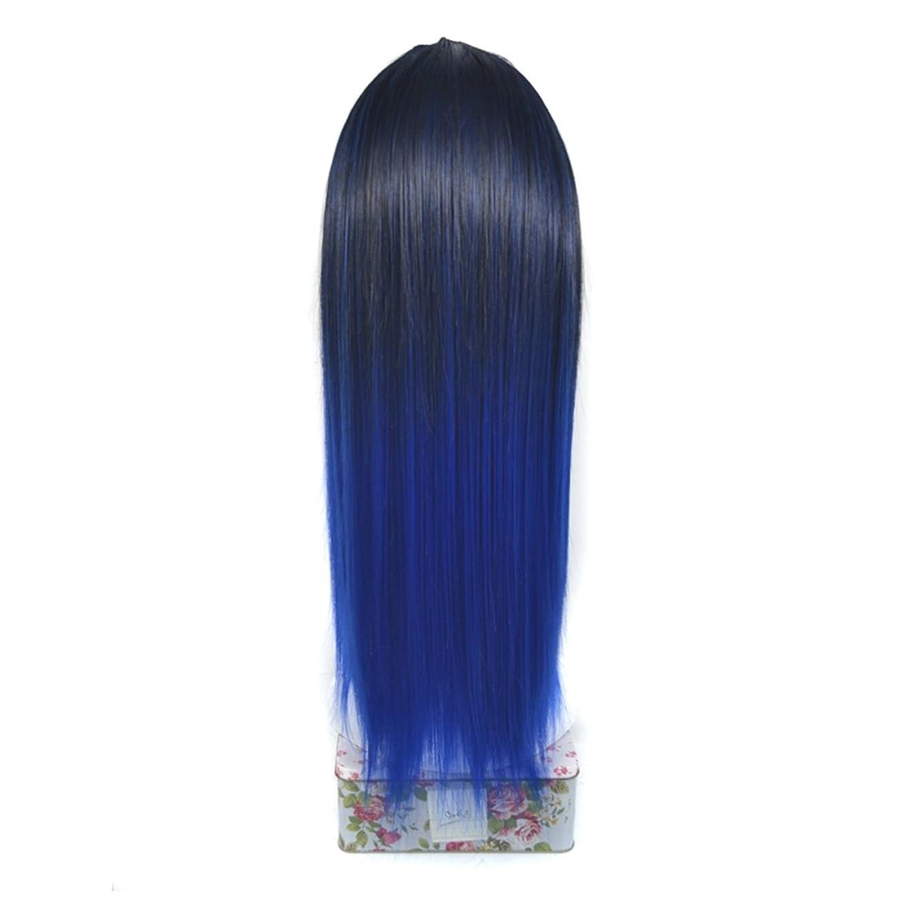格納ムス代替案JIANFU ノンマーキング 化学繊維 ヘア エクステンション U字型 ハーフ ヘッドヘア ピース リアル 長い ストレート ウィッグ カバー (Color : Black gradient sapphire blue)