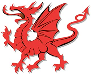 North Wales Daily Post